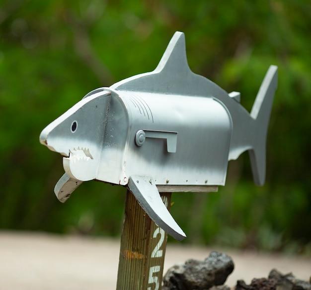 Почтовый ящик большой белой акулы крупным планом