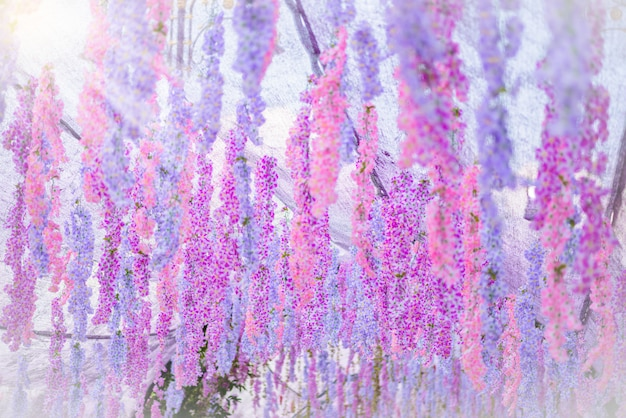 The great wisteria flower