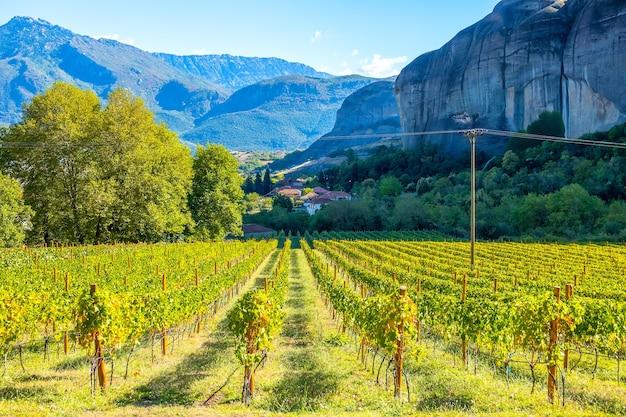Греция. солнечный летний день в скалах каламбаки. виноградник скального монастыря метеоры