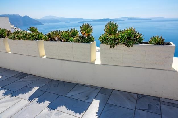 그리스. 산토리니 섬의 칼데라에서 화창한 여름날. 바다 경치 산책로와 다육 식물