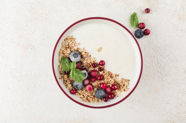 Греческий йогурт с мюсли, свежей черникой, клюквой и мятой в тарелке на светлом фоне. легкий завтрак для диеты и фитнеса. вид сверху с копией пространства для текста.