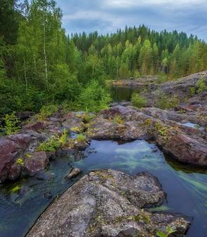 Зеленые водоросли в воде на бедном пороге, порог, на реке суна карелия, русский пейзаж лето