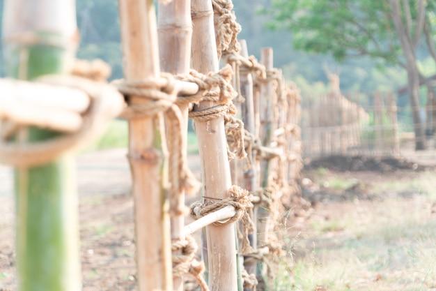 緑と茶色の竹フェンス