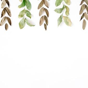 白い表面に緑と茶色の葉