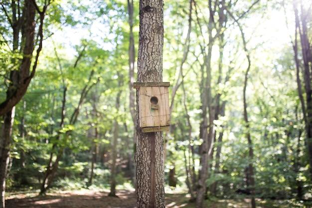 Зеленый и коричневый деревянный скворечник, свисающий с дерева с листвой, размытой на заднем плане