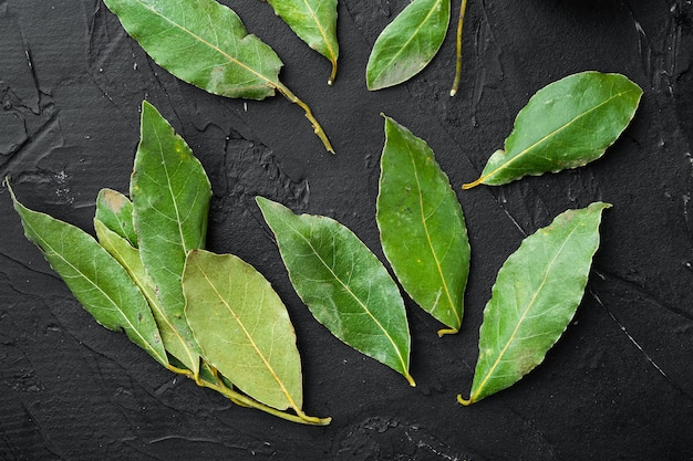 녹색 및 신선한 월계수 월계수 잎 세트, 검은 돌 배경, 위쪽 전망, 평평한 평지