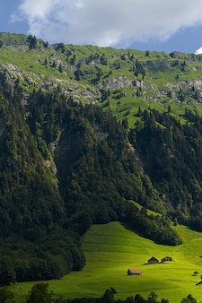 昼間の緑と灰色の山