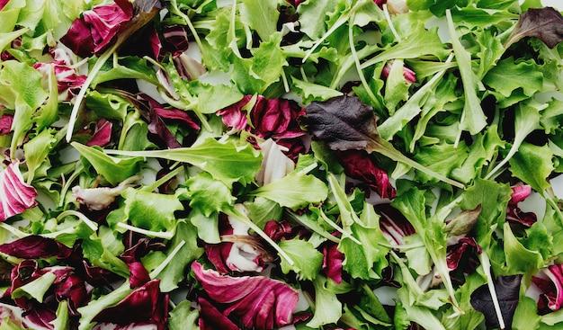 緑と紫のサラダの葉が背景をミックスします。高品質の写真