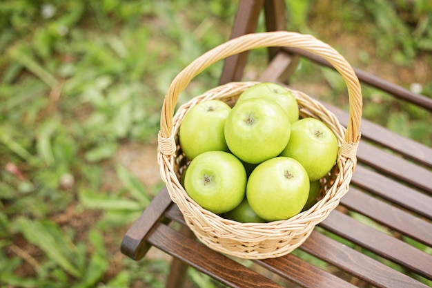 Green apple in wicker basket on garden chair green grass harvest time copy space