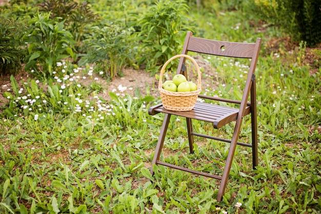 Green apple in wicker basket on garden chair green grass harvest time