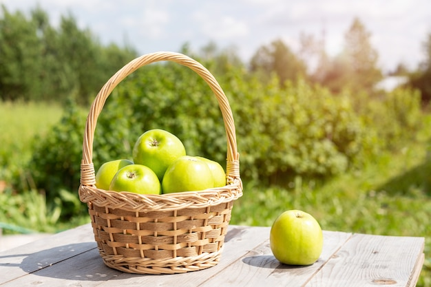 Green apple in wicker basket on wooden table green grass in the garden harvest time sun flare