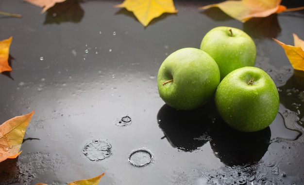 Green apples and oak leaves on a dark with raindrops