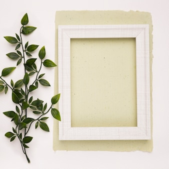 Green artificial leaves near the white wooden frame on paper against white backdrop