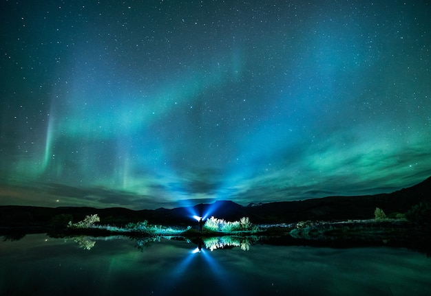 Green aurora lights above body of water