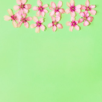 Green background with flowers with copyspace
