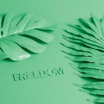 Green background with palm leaves