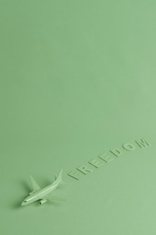 Green background with toy plane