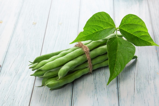 녹색 콩 나무 배경에 닫습니다