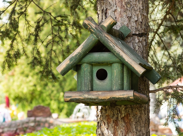 A green birdhouse on a tree, the background is blurred