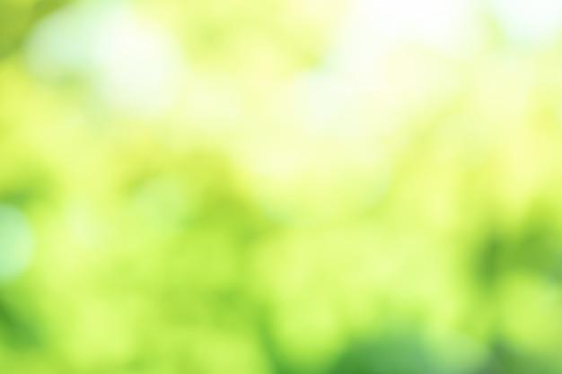 緑背景をぼかした写真抽象的な光グラデーションボケ自然