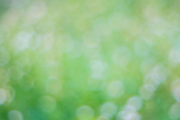 Green bokeh nature background