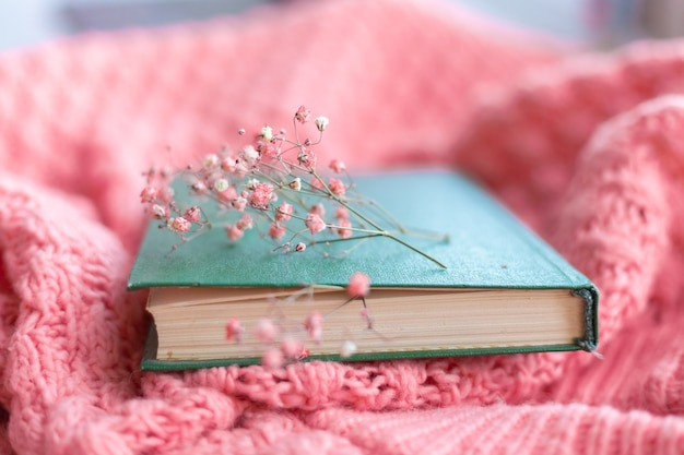 Green book with dry flowers on a pink warm knitted sweater
