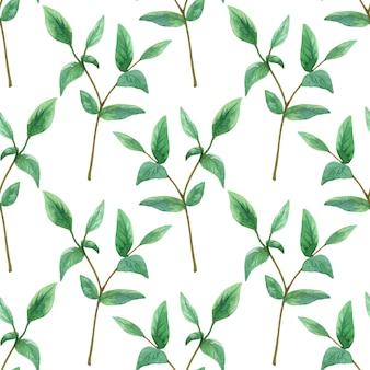 緑の枝。シームレスパターン。手描きの水彩イラスト。