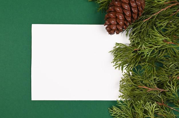 Зеленые ветви возле листа белой бумаги вид сверху.