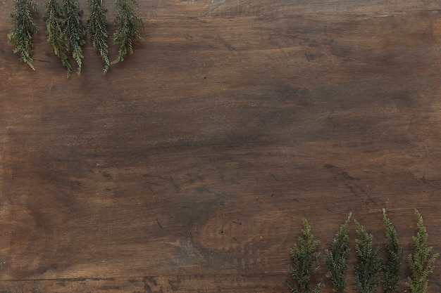 Green branches on wooden table