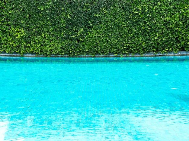 スイミングプールのきれいな水の上の緑の茂みの柵