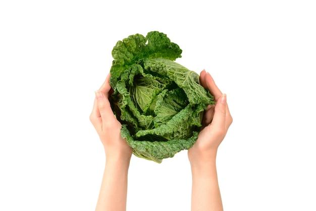 Зеленая капуста, изолированные на белом фоне. в руках женщины.