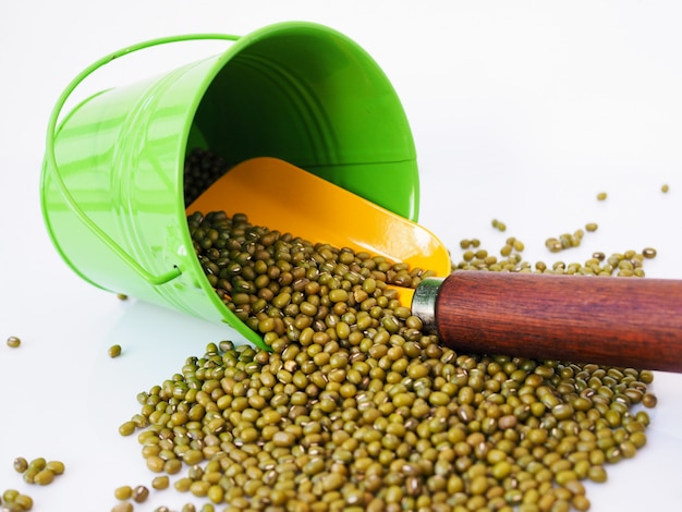 Green can and yellow shovel with mung bean isolated on white surface.