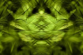 緑の鶏の羽毛が柔らかくぼやけたスタイルの背景