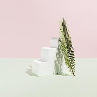 파스텔 핑크와 청록색 배경에 녹색 cikas 야자수 잎. 하나의 흰색 물결 모양의 3d 개체입니다. 자연 메이크업 또는 화장품 미용 제품 스타일. 자연스러운 하드 라이트 섀도우.