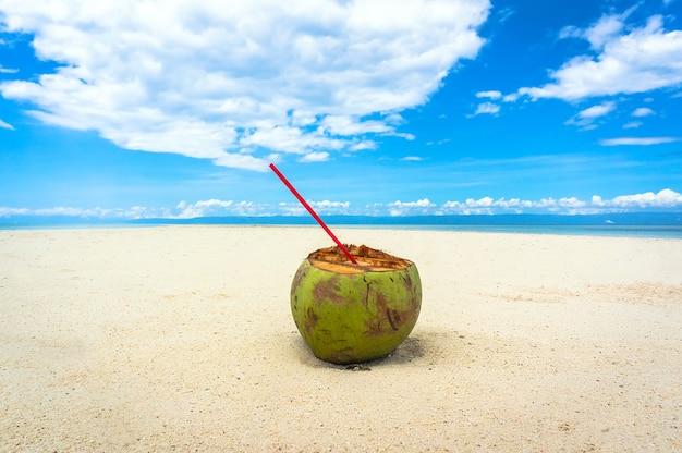 Зеленый кокос на белом пляже на фоне чистой бории без людей на филиппинских островах