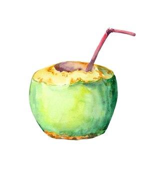 カクテルストローと緑のココナッツ。水彩