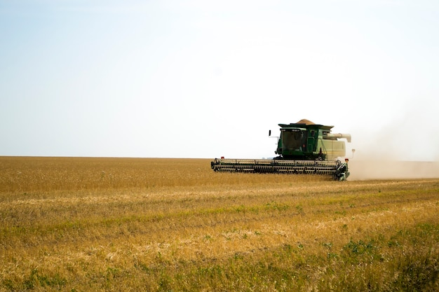 Зеленый зерноуборочный комбайн собирает урожай пшеницы на поле в австрии летом