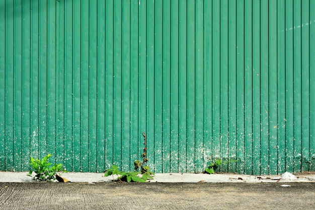 Green corrugated metal roof wall