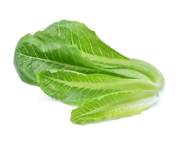 白い背景の上の緑のコスレタスの葉
