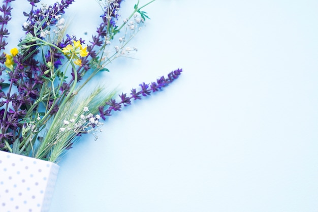 Green ear of wheat and flowers in the polka dot box on blue background