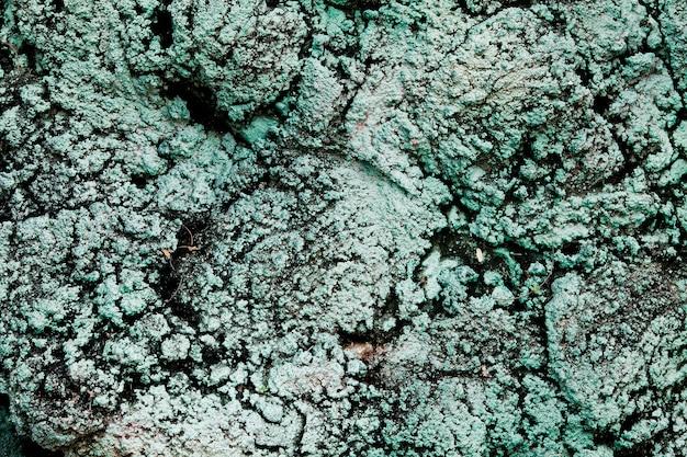녹색 노출 콘크리트 벽 텍스처 벽지