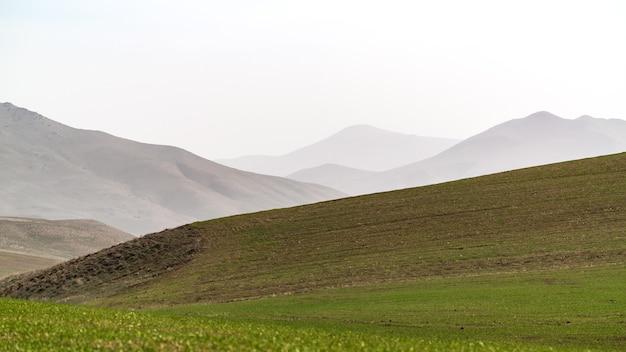 Зеленые поля фермы на фоне туманного горного хребта