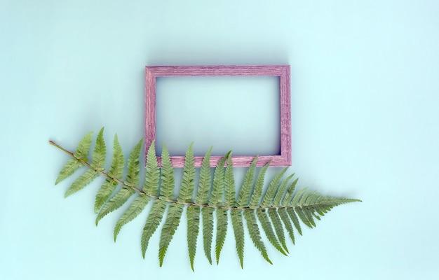 Зеленый лист папоротника и деревянная рамка