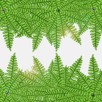 Green fern watercolor paint fresh spring nature  background
