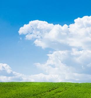 자연과 환경 배경으로 구름이 아름다운 초원과 녹색 들판과 푸른 하늘