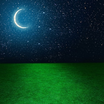 Green field on the background of the night sky  elements of this image furnished by nasa