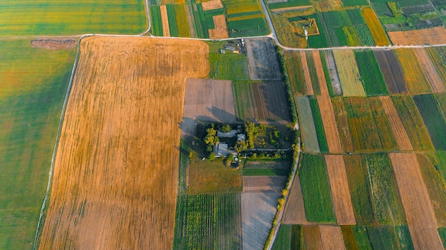The green field is at sunset shot with the drone