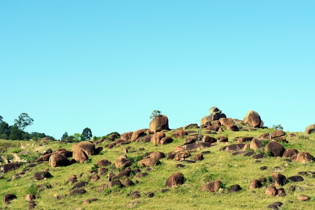 Green field landscape covered with rocks scattered in the area