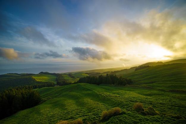 Зеленое поле на холме с небольшими участками леса во время красочного восхода солнца
