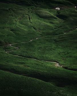 Зеленое поле на плато